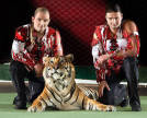 Zapashny Brothers with a tiger