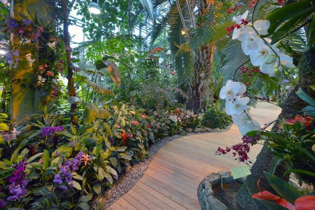 apothecaries 39 garden in moscow scenic sights of russia 2018