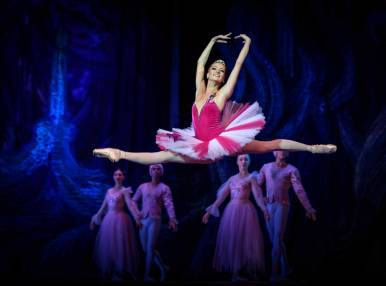 Stars of the World Ballet, Gala Concert