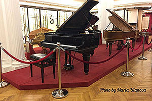 in the hall Musical instruments of the European professional tradition.